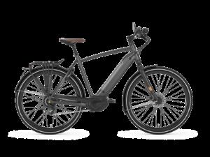 De Gazelle Cityzen Speed 380 is scherp geprijsd leverbaar bij de enige officiële Gazelle Premium dealer van Alphen aan den Rijn; Van der Louw tweewielers.