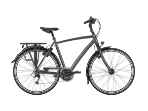De Gazelle Chamonix T30 is scherp geprijsd leverbaar bij de enige officiële Gazelle Premium dealer van Alphen aan den Rijn; Van der Louw tweewielers.