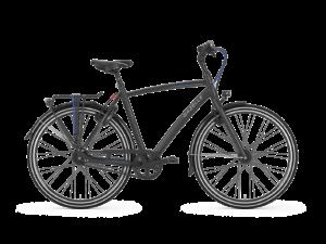 DeGazelle Chamoni S8 is scherp geprijsd leverbaar bij de enige officiële Gazelle Premium dealer van Alphen aan den Rijn; Van der Louw tweewielers.