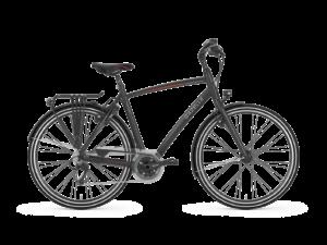 DeGazelle Chamonix S30 is scherp geprijsd leverbaar bij de enige officiële Gazelle Premium dealer van Alphen aan den Rijn; Van der Louw tweewielers.