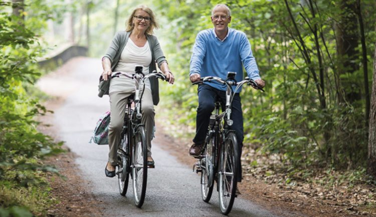 Batavus E-bike lente collectie banner